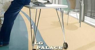 VINYL LG PALACE